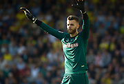 Norwich City's 'keeper Angus Gunn during the EFL Sky Bet Championship match between Norwich City and Hull City at Carrow Road, Norwich, England on 14 October 2017. Photo by John Marsh.