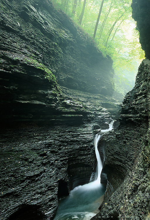Watkins Glen State Park, Finger Lakes, NY.<br /> Millions of years stare back at me.  The shale ledges, exposed by what the stream cut, caught the soft light and showed itself to me. In one of the narrowest parts of the gorge, the walls tower high above me to the forest rim, which held the fog, backlit by early morning. Perhaps because it gets less light, they named the falls after the god of the underworld.  I will let the gods fight it out, and admire the result.