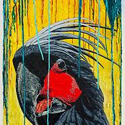 Bowen Galleries Ltd, recent exhibition coverage, 12 months