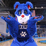 Philadelphia 76ers New Mascot Franklin take the floor  prior to the start of a NBA D-league regular season basketball game between the Delaware 87ers and the Westchester Knicks (New York Knicks) Wednesday, Feb. 17, 2015 at The Bob Carpenter Sports Convocation Center in Newark, DEL