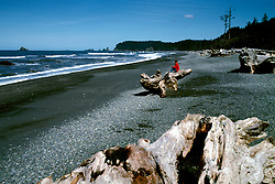 WA: Washington State; Olympic National Park, Rialto Beach    .Photo Copyright: Lee Foster, lee@fostertravel.com, www.fostertravel.com, (510) 549-2202.Image: waolym206