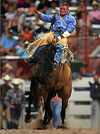 Ben Londo scores a 68 while riding tough Porcupine Paddle, Bareback Bronc Riding, 25 Jul 2007, Cheyenne Frontier Days