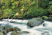 Iao Valley, Iao Valley State Monument, Iao Stream, Iao Needle, Maui, Hawaii