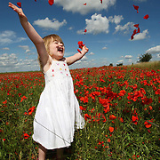 "THREE YEAR OLD MIA    IN A POPPY FIELD NEAR CAMBRIDGE...Spectacular red poppy fields are now a rare sight in the UK, plant conservationists have revealed today (Mon)...The well-loved wild flower could once be found growing among the crops in every cornfield in Britain...But over the past century modern farming has meant these numbers have dramatically declined...Now a blaze of crimson poppies can be found in just one in every 500 fields...""It's very sad that poppy fields have become such a rarity,"" said Andy Byfield, a spokesman for the plant conservation charity Plantlife...""In the past they would have been found in every arable field, but they have declined over the past 100 years and particularly since the Second World War...""A whole field of poppies is now an unusual sight.""..Poppies are among 54 species of arable plants in Britain that are now listed as rare or threatened and seven of these have become extinct...Mr Byfield said they had disappeared because of widespread use of weedkillers over the last decades...He said: ""Poppies are one of a range of plant species that used to be present in the arable landscape of Britain...""Sadly intense farming, in particular the use of herbicides and pesticides since the Second World War, has led to their decline.""..Poppies flower from June through to late summer. ..Their seeds last for at least 100 years and they tend to spring up in places where the ground has been disturbed...Thousands of poppies grew in the trenches and craters in Flanders during World War One after artillery shells and shrapnel stirred up the earth and exposed the seeds to light...Now artificial poppies are sold for war charities on Remembrance Day in November...The poppy has also been the inspiration for many artists and one of the most famous paintings is Claude Monet's Poppy Fields at Argenteuil...SEE COPY CATCHLINE POPPY FIELDS.."