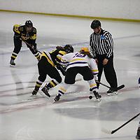 Women's Ice Hockey: St. Catherine University Wildcats vs. Gustavus Adolphus College Gusties