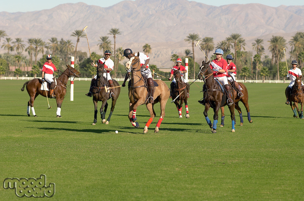 Polo players playing Match on polo field