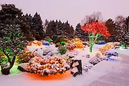 20101230 BOL Snow