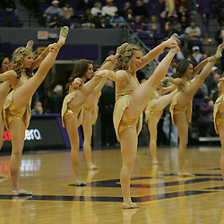 Jan 09, 2010; Baton Rouge, LA, USA; LSU Tiger Girls dancers perform during halftime of a game between the Alabama Crimson Tide and the LSU Tigers at the Pete Maravich Assembly Center. Alabama defeated LSU 66-49.  Mandatory Credit: Derick E. Hingle-US PRESSWIRE