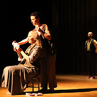 Carli Mareneck, seated, Sarah Levitt Ramey, and Sam Horning perform Saturday at the Link Centre