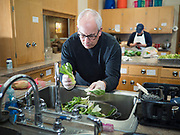 """26 FEBRUARY 2020 - FARMINGTON, MINNESOTA: BOB BRIGGS, from Farmington, a volunteer at the community dinner at Faith Church, washes bok choy before the dinner. Faith Church is a United Methodist Church in Farmington, MN, about 30 minutes south of the Twin Cities. The dinner is sponsored by Loaves & Fishes, a Christian organization that provides food for community dinners and foodbanks. Farmington, with a population of 21,000, is a farming community that has become a Twin Cities suburb. The city lost its only grocery store, a Family Fresh Market, in December, 2019. The closing turned the town into a """"food desert."""" In January, Faith Church started serving the weekly meals as a response to the store's closing. About 125 people per week attend the meal at the church, which is just a few blocks from the closed grocery store. The USDA defines food deserts as having at least 33% or 500 people of a census tract's population in an urban area living 1 mile from a large grocery store or supermarket. Grocery chains Hy-Vee and Aldi both own land in Farmington but they have not said when they plan to build or open stores in the town.      PHOTO BY JACK KURTZ"""
