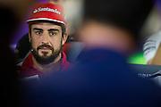 November 21-23, 2014 : Abu Dhabi Grand Prix, Fernando Alonso (SPA), Ferrari