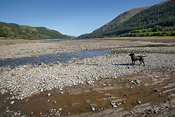 © Licensed to London News Pictures. 30/06/2018. Thirlmere, UK.  A general view showing the reduced level of water in Thirlmere Reservoir in the Lake District as the heat wave continues.  Photo credit: Anna Gowthorpe/LNP