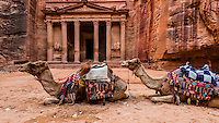Camels in front of The Treasury (Al-Khazneh), Petra Archaeological Park (a UNESCO World Heritage Site), Petra, Jordan.