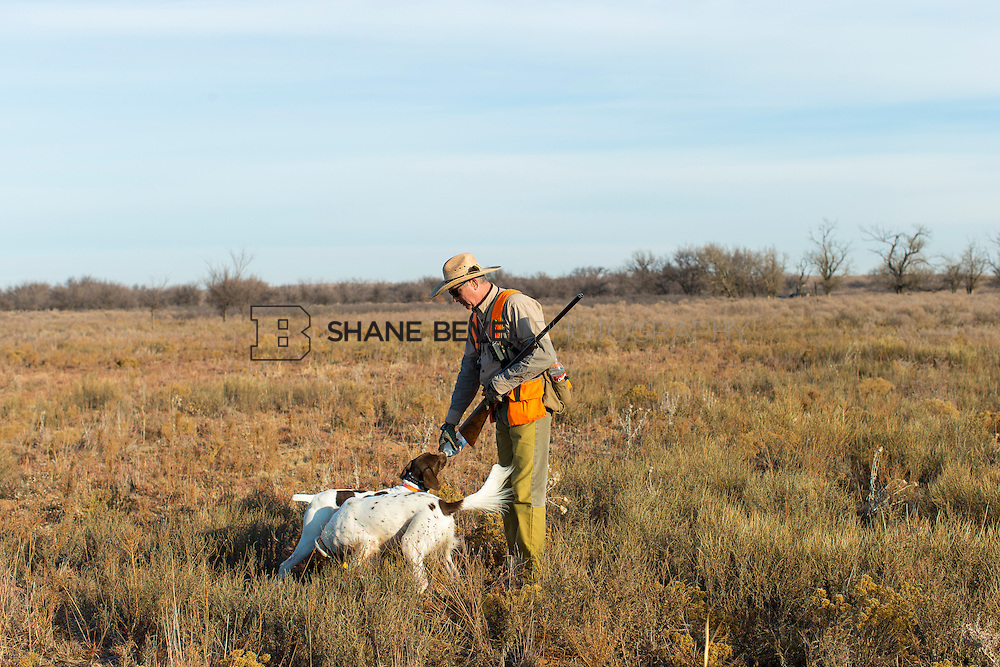 12/8/12 10:27:22 AM -- Quail hunting on the Cimarron Hills WMA in western Oklahoma. <br /> <br /> Photo by Shane Bevel