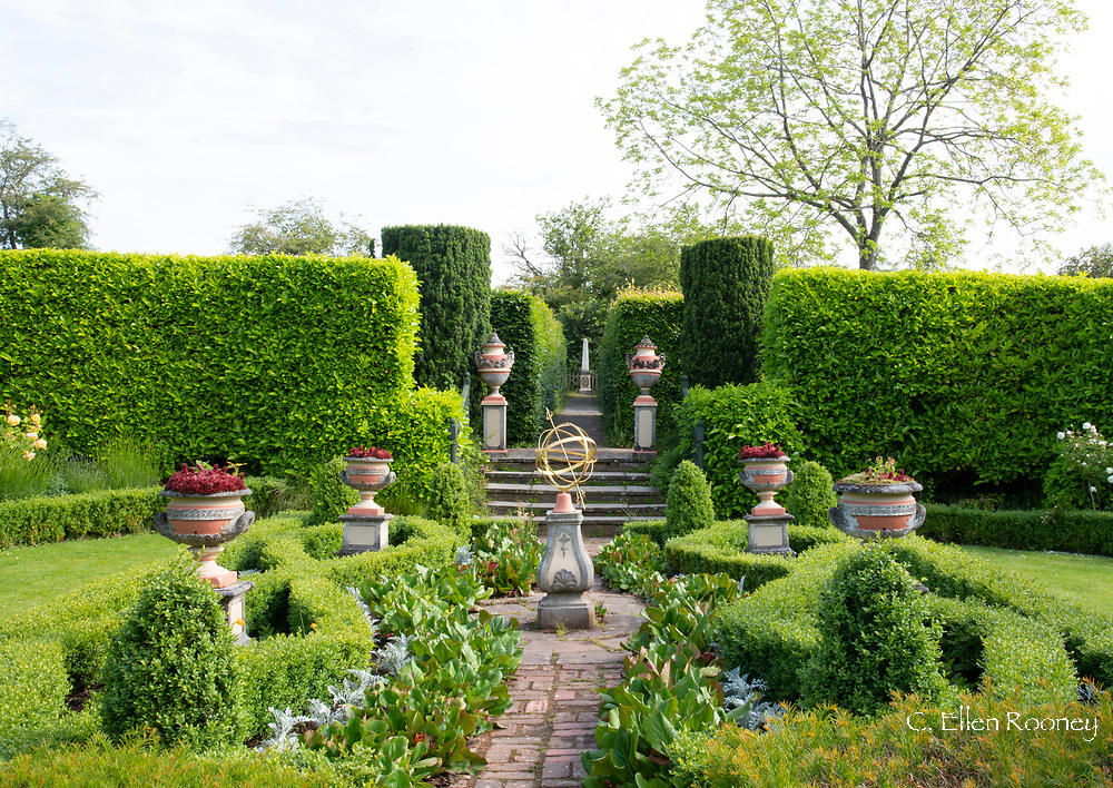 Urn planters, Taxus baccata, and Buxus in the sunken Silver Jubilee Garden at The Laskett Gardens, Much Birch, Herefordshire, UK