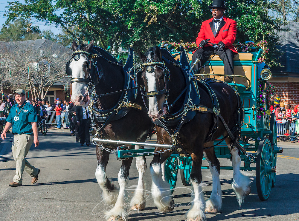 "A horse-drawn carriage leads the way during the Joe Cain Procession ar Mardi Gras, March 2, 2014, in Mobile, Ala. The parade, also known as ""The People's Parade,"" celebrates the life of the late Joe Cain, who revived Mardi Gras in Mobile in 1867 after it was temporarily halted by the Civil War. Dean has portrayed the character since 1985. French settlers held the first Mardi Gras in 1703, making Mobile's celebration the oldest Mardi Gras in the United States. (Photo by Carmen K. Sisson/Cloudybright)"