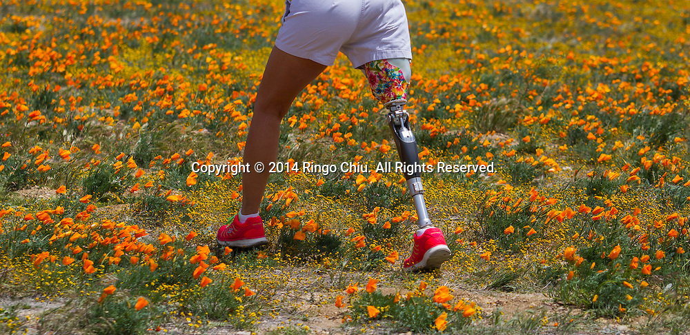 A woman walks on a prosthetic leg through a field of poppies near Antelope Valley in Lancaster, California, Sunday, April 27, 2014. The California poppy is the state flower. Wildflowers are showing up in massive quantities throughout desert areas in Southern California because of recent rains. (Photo by Ringo Chiu/PHOTOFORMULA.com)