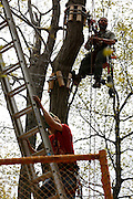 Workers put the finishing touches on Bristol Mountain's new Aerial Adventure Park on Tuesday, May 20, 2014.