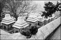 Nepal. Vallée de Kathmandu. Pashupatinath. // Nepal. Kathmandu valley. Pashupatinath.