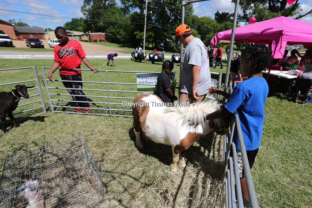 Jeremiah Nalls, 9, takes a chacne to pet a pony at the small petting zoo ste up for Thursday's Hillsdale Aprtments Summer Kick-Off on Monument Drive in Tupelo.