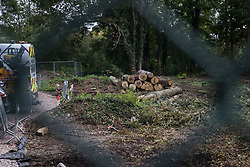 Denham, UK. 11th September, 2020. A site where tree felling is currently taking place for the HS2 high-speed rail link. Many thousands of trees have already been felled for the HS2 project in the Colne Valley and tree felling is currently taking place in Denham Green, Denham and Harefield.