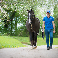Valegro - Daily Life