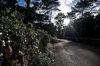 Vecchia Strada Fasano-Cisternino. Percorso interno