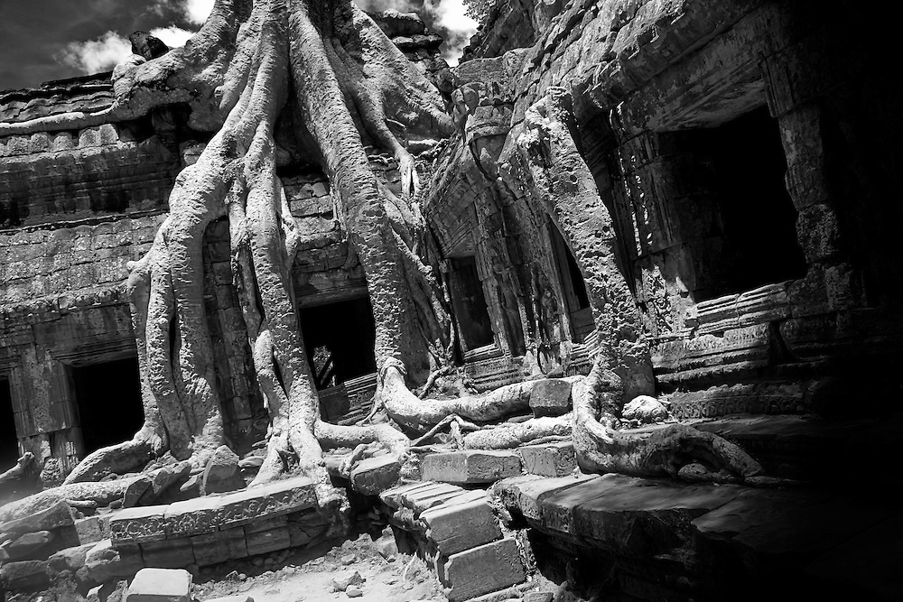 The Lost World<br /> Ta Phrom is a maze of dark ruins that has been ensnared by the power of nature.