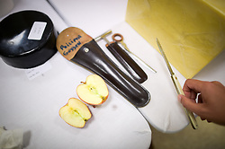 """Tools of the trade, including cheese irons, folding knife and an apple are all used during the British Cheese Awards at the Royal Bath & West show in Somerset, where more than 1,000 British cheeses are vying for the title of supreme champion at an event designed to a be a """"great celebration"""" of the industry."""