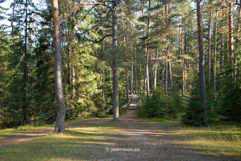 Taevaskoja, Põlva County, Estonia