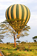 Tanzania Hot air balloon safari October 2008