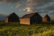 Late evening sun strikes three structures in rural Peoria County near Brimfield, Illinois.