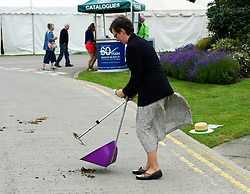 © Licensed to London News Pictures.16/07/15<br /> Harrogate, UK. <br /> <br /> A woman cleans up horse manure from the road on the final day of the Great Yorkshire Show.  <br /> <br /> England's premier agricultural show has seen three days of showcasing the best in British farming and celebrating the countryside.<br /> <br /> The event which attracts over 130,000 visitors each year displays the cream of the country's livestock and offers numerous displays and events giving the chance for visitors to see many different countryside activities.<br /> <br /> Photo credit : Ian Forsyth/LNP