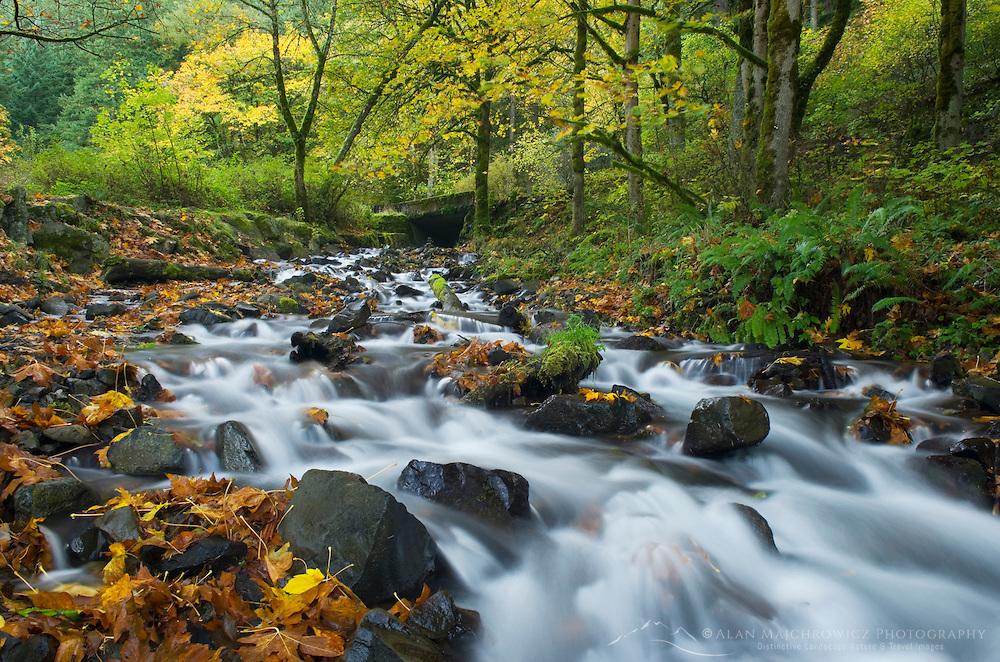Wahkeena Creek in Fall, Columbia River Gorge National Scenic Area Oregon