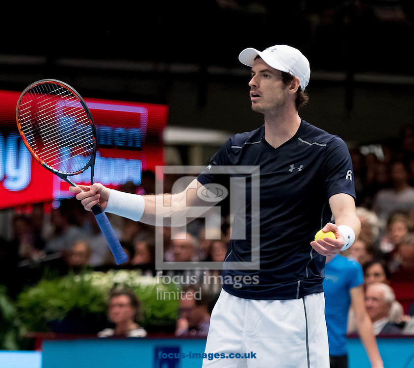 Andy Murray during the final of the Erste Bank Open at Wiener Stadthalle, Vienna, Austria.<br /> Picture by EXPA Pictures/Focus Images Ltd 07814482222<br /> 30/10/2016<br /> *** UK &amp; IRELAND ONLY ***<br /> EXPA-PUC-161030-0350.jpg