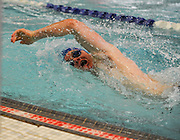 Bedford High School senior Cameron Zamot swims in the 200 yard freestyle during the DCL meet at Atkinson Pool in Sudbury, Jan. 31, 2015.   (Wicked Local Photo/James Jesson)