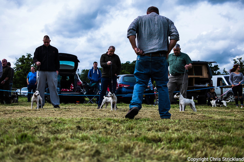 The Wells, Bedrule, Bonchester Bridge, Hawick, UK. 26th July 2015. The Jedforest Hunt Hound, Terrier & Lurcher show in the countryside of the Scottish Borders brings together a plethora of people in a celebration of their hunting breeds. Here Jack Russell terriers and their owners collect their prizes.
