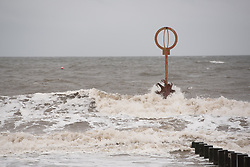Beast From The East 2 (or is it Return of the Beast From The East?) buffets Cressida, the beach octopus sculture on Portobello Beach, Edinburgh. © Jon Davey/ EEm