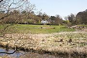Wetland pasture fields of River Deben valley and floodplain, Sutton, Suffolk, England, UK