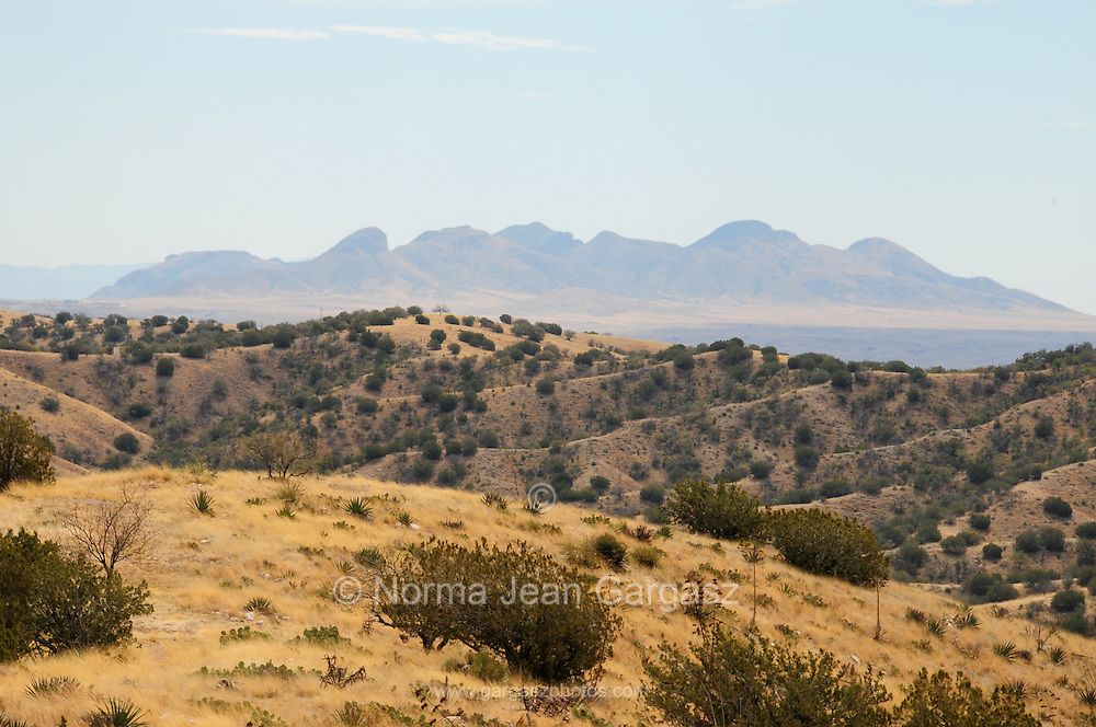 The view to the southeast of the Mustang Mountains in the distance from the site of the Rosemont Mine in the grasslands of the eastern foothills of the Santa Rita Mountains, Arizona, USA.