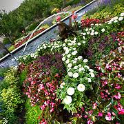 Foliage and flowers at Kauffman Memorial Gardens in Kansas City, Missouri.