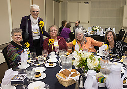 50year reunion for the class of 1966 during homecoming at PLU, Saturday, Oct. 15, 2016. (Photo: John Froschauer/PLU)