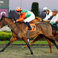 Cats Eyes and Shane Kelly winning the 4.50 race