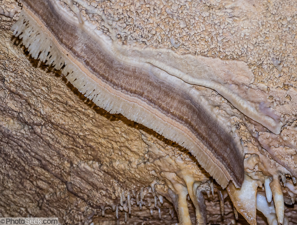 "A bacon-like helictite strip grows on the celing of Caverns of Sonora, Sutton County, Texas, USA. The world-class Caverns of Sonora have a stunning and sparkling array of speleothems (helictites, stalactites, stalagmites, flowstone, coral trees, and other calcite crystal formations). National Speleological Society co-founder, Bill Stephenson said, after seeing it for the first time, ""The beauty of Caverns of Sonora cannot be exaggerated...not even by a Texan!"" Geologically, the cave formed between 1.5 to 5 million years ago within 100-million-year-old (Cretaceous) Segovia limestone, of the Edward limestone group. A fault allowed gases to rise up to mix with aquifer water, making acid which dissolved the limestone, leaving the cave. Between 1 and 3 million years ago, the water drained from the cave, after which speleothems begain forming. It is one of the most active caves in the world, with over 95% of its formations still growing. Sonora Caves are on Interstate 10, about half-way between Big Bend National Park and San Antonio, Texas."