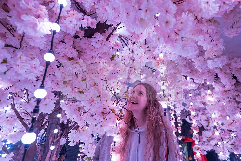 """© Licensed to London News Pictures. 07/04/2018. LONDON, UK. Belgian student Victoria Thommen walks through a room called The Infinity Garden, created by floral design studio Early Hours, which conveys a never-ending, abstract meadow of blossom trees inspired by the season of Hanami, the Japanese custom of flower viewing. The room forms part of """"Sense of Space"""", a four-room art pop-up which has opened to the public in Broadgate to challenge the visitor's sensory perceptions through art, the installation is open until 18 May.  Photo credit: Stephen Chung/LNP"""