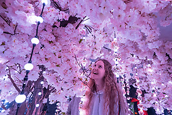 "© Licensed to London News Pictures. 07/04/2018. LONDON, UK. Belgian student Victoria Thommen walks through a room called The Infinity Garden, created by floral design studio Early Hours, which conveys a never-ending, abstract meadow of blossom trees inspired by the season of Hanami, the Japanese custom of flower viewing. The room forms part of ""Sense of Space"", a four-room art pop-up which has opened to the public in Broadgate to challenge the visitor's sensory perceptions through art, the installation is open until 18 May.  Photo credit: Stephen Chung/LNP"