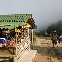 Puesto de venta de dulces y fresas en carretera y gente a caballo, Galipán, Estado Vargas, Venezuela.