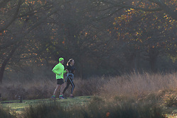 © Licensed to London News Pictures. 05/11/2017. LONDON, UK.  Runners at sunrise in Richmond Park on a bright autumn morning. Photo credit: IAN SCHOFIELD/LNP