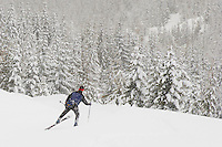 A cross country skier strides into new snow along the Rainier Vista Trail of the Mount Tahoma Trails in the Washington state Cascade Mountain Range near Mount Rainier. USA