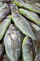 Al Shidagha Fish Market, Dubai
